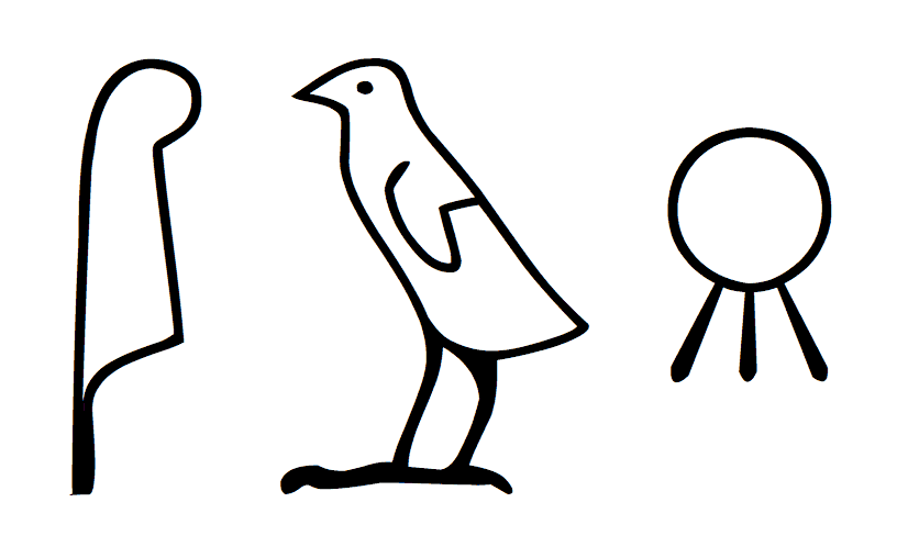 egyptian hieroglyphics bird
